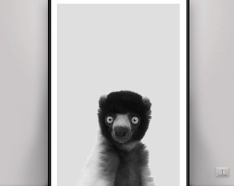 Lemur Print, Lemur DIGITAL ART, Digital Download, DOWNLOAD Pictures, Animal Black and White, Black White Print, Nursery Wall Art, Lemur Art