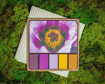 Pink Poppy Spring Palette greeting card