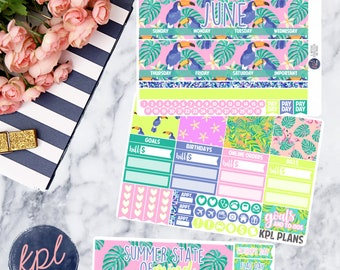 June Monthly Planner Sticker Kit. Perfect for Erin Condren Life Planners! JUNE