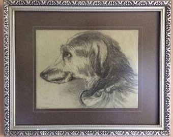 Original Pencil Drawing. Dog Portrait without frame.