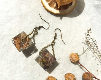 cube earrings that imprison random flower petals and seeds-botanical jewelry-jewelry-natural real flowers