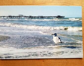 Redington Beach Florida Fishing Pier JUMBO 5.5x8.5 Postcard Seagull Waves Coastal Photo Art PRINT Photography By Scott D Van Osdol Ocean Sea