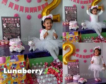 Kitty Marie-Marie Aristocats Blackboard / Whiteboard of birthday-Marie Cat Marie The Aristocats Birthday Chalkboard-Marie Sign