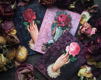 Gothic Wiccan Witchcraft, Vintage Red & Pink Rose Floral Love Spell, Valentines,Christmas,Mothers Day, Luxury greeting card three (3) pack.