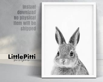 Nursery wall art, rabbit print, rabbit photo, nursery rabbit, baby rabbit, rabbit cub, monochrome print, large nursery print, easter rabbit