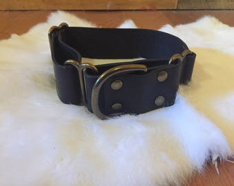 "1.5"" Wide Black Leather Martingale Dog Collar With Name"