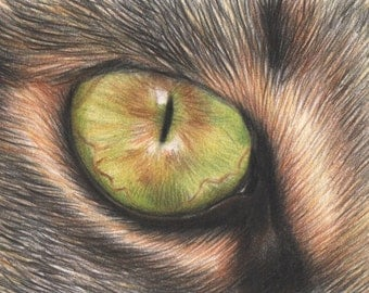 Miniature drawing - ACEO - Original drawing of a cheetah - Cat drawing made with Polychromos colored pencils