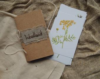 "Set of postcards ""Woodland"""