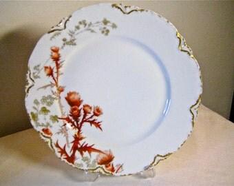 A Haviland porcelain plate