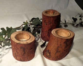 Set of 3 Scots pine candle holders.