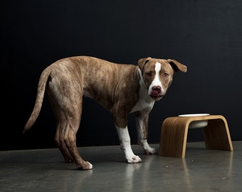 Modern Dog Bowl Stand - Single Tall