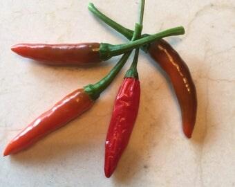 Organic Hot Chili Pepper Seeds