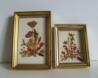 Vintage set of two framed dried flower and herb art work framed wall hanging by Reichlin made in Switzerland orange red and yellow flowers