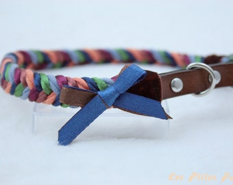 Multicolored braided dog collar