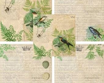 Printable Journal Page, Botanical, Bird, Lined Stationery, JPEG Instant Download, Scrapbooking Paper, Digital Art, Lined Paper, Nature, Nest