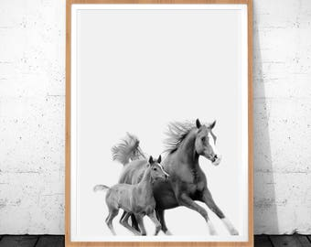Horses Print, Horses Photography, Instant Download, Horse Printable Art, Horse Wall Art, Animal Black and White, Horse Art, Kids Room Poster