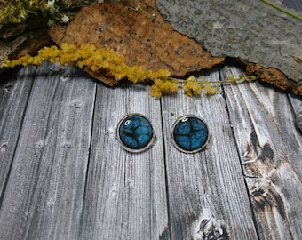 Synthetic-resin - Silver earrings with ornate dark blue livery (223) - resin