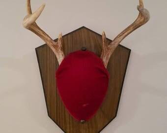Deer antler mount, taxidermy, antlers, horns, decor, man cave ,cabin, trophy buck