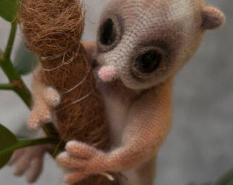 Lemur Lori