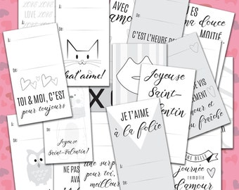 Whole Kit of 25 gift tags of Valentine gift tag, identification, french, black and white to colour, printed on cardboard