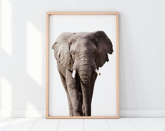 Elephant, Elephant Print, Elephant Wall Art, Elephant Artwork, Safari Animal, Desert Animal, Nursery, Nursery Decor, Nursery Room, Baby Room