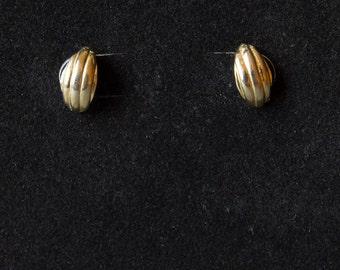 Tiny Shell-Shaped Gold Stud Earrings