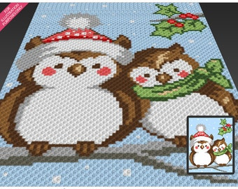 Two Christmas Owls crochet blanket pattern; c2c, cross stitch; knitting; graph; pdf download; no written counts or row-by-row instructions