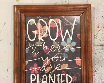 Grow where you are planted