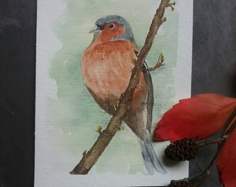 Original painting of Chaffinch on a branch