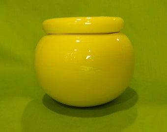 Small Round Self-Watering Flower Pot