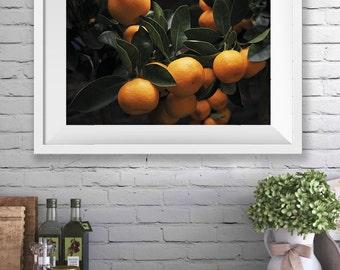 Food Print, Oranges Print, Food Art, Food Photography, Wall Art, Food Wall Art, Fruit Photography, Food Print, Instant Download Art