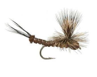 Fishing Flies - Adams Ext Body May Fly, Sizes 14, 16, 18