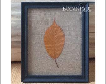 Black distressed frame with burlap background and elm leaf
