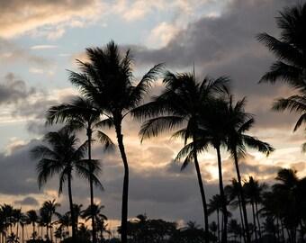 Hawaiian Sunset Silhouette Palm Trees - Canvas Gallery wrap print I