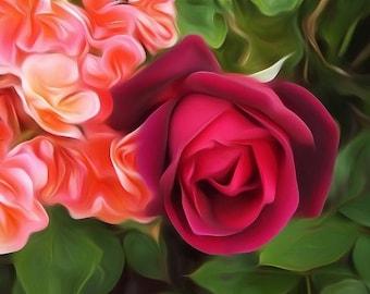 Digitally Enhanced 8x10 Photo Print - Dark Red Rose
