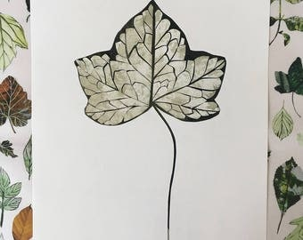 Papercut Collage - Ivy