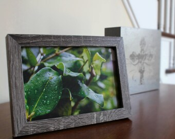 Green Water Droplets Framed Photo