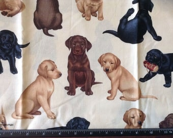 Lab Puppies by Timeless Treasures