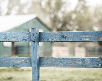 Authentic Custom Bamboo Panel-Mr. Blue Fence