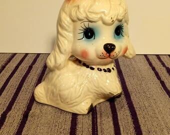 Dog moneybox - Alcancía de perro