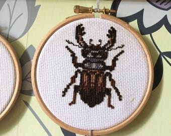 Cross stitch Stag Beetle