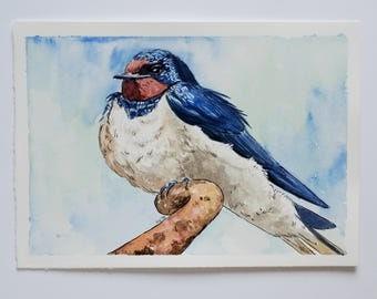 Barn swallow bird original watercolor and ink painting