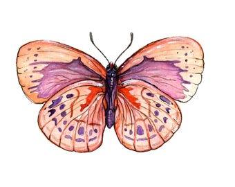 Original Orange Butterfly Watercolor