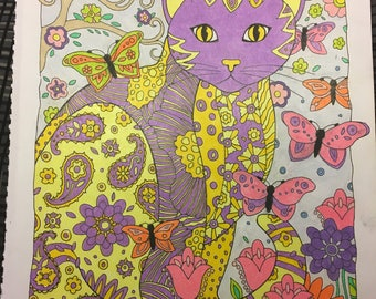 Purple and yellow cat