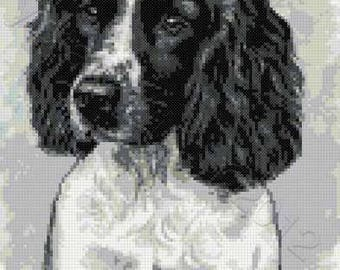 Black Springer spaniel counted cross stitch kit