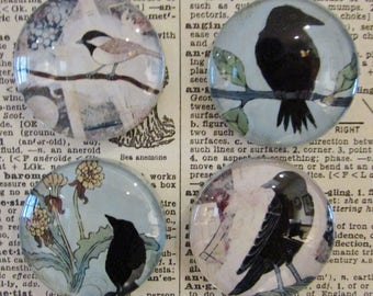 Blackbird Handcrafted Magnet - Original Crow Art - Raven Glass Magnet - Set of Four - Rare Earth Magnet  -  Gift for Her - Gift for Friend