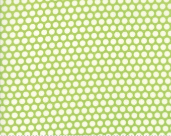 Basics (55023 34) Bliss Dot Green Bonnie & Camille
