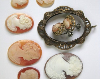 8 vintage carved CAMEOS loose carved shell glass plus pendent frame