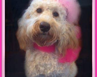 Dog Birthday Hat, Puppy Birthday Hat, Doggie Birthday Hat, Baby Birthday Hat, Golden Doodle Birthday Hat, Dog Gift, Doggie Birthday Hat