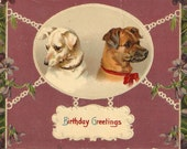 Happy Birthday from the Dogs, Birthday Greetings Vintage  Postcard   - Carte postale, violets